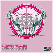 Play & Download Afternoon Class by Alejandro Fernández | Napster