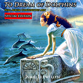 Play & Download To Dream of Dolphins: Bonus Edition by Jamie Llewellyn | Napster