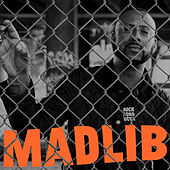 Rock Konducta, Pt. 1 by Madlib