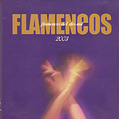 Flamencos del Dos Mil by Various Artists