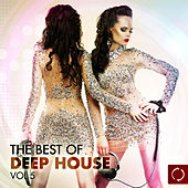 The Best of Deep House, Vol. 5 by Various Artists
