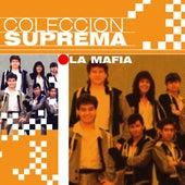 Play & Download Coleccion Suprema by La Mafia | Napster