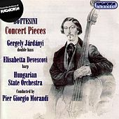 Play & Download Bottesini: Works for Double Bass, Vol. 1 - Concert Pieces by Gergely Jardanyi | Napster