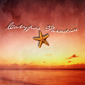 Play & Download Calypso Paradise by David Shelley | Napster