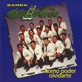 Play & Download Como Poder Olvidarte by Banda Cana Verde | Napster