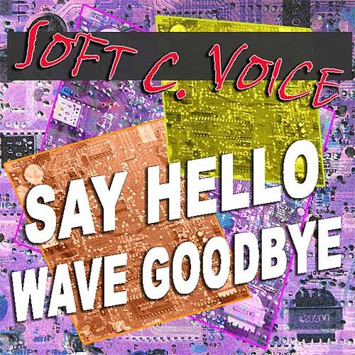 Play & Download Say Hello Wave Goodbye by The Soft Pink Truth | Napster