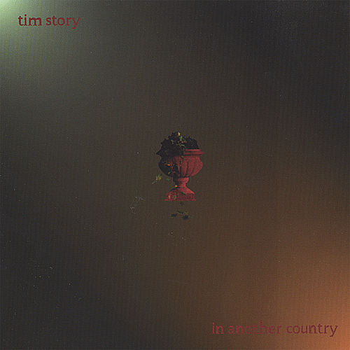In Another Country by Tim Story
