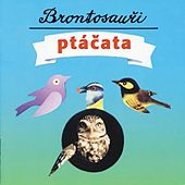 Play & Download Ptacata by Brontosauri | Napster