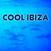 Play & Download Cool Ibiza by Various Artists | Napster