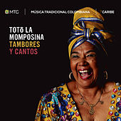 Play & Download Tambores y Cantos by Toto La Momposina | Napster