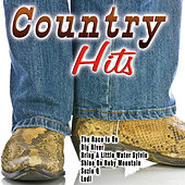 Хиты Страна - Country Hits von Various Artists