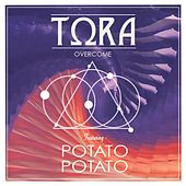 Play & Download Overcome (feat. Potato Potato) by Tora | Napster