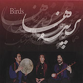 Play & Download Birds - Parandeh'ha by Hossein Alizadeh | Napster