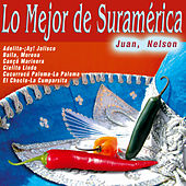 Play & Download Lo Mejor de Suramérica by Nelson | Napster