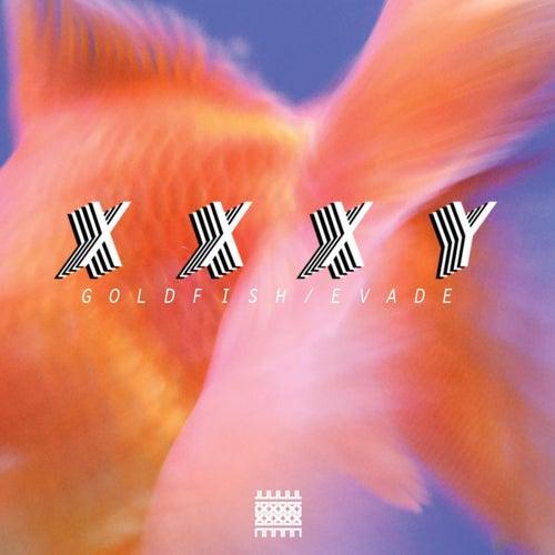 Goldfish by Xxxy