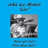 Never Get out of These Blues Alive by John Lee Hooker