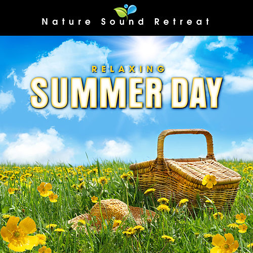Relaxing Summer Day by a Meadow Stream with Birds and Wildlife Sounds by Nature Sound Retreat