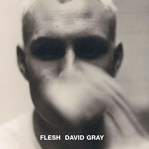 Play & Download Flesh by David Gray | Napster
