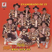 Play & Download Enamorado De Ti by Banda Brava | Napster