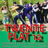 Play & Download Twente plat, Volume 12 by Various Artists | Napster