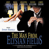 The Man From Elysian Fields by Anthony Marinelli