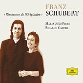 Play & Download Schubert: Works for Piano Duet and Piano Solo by Various Artists | Napster
