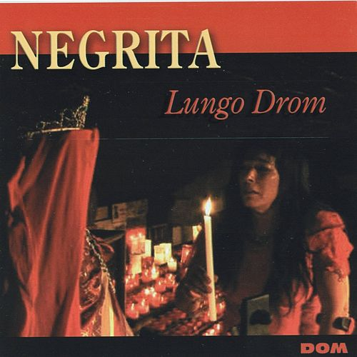 Play & Download Lungo Drom by Negrita | Napster