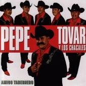 Amigo Tabernero by Los Chacales de Pepe Tovar