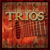 Trios by Various Artists