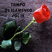 Play & Download Tiempo de Flamenco Vol. IX by Various Artists | Napster