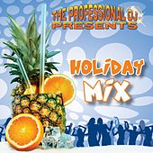 Holiday Mix by The Professional DJ