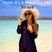 Play & Download Damn It's a Beautiful Day by Soraya | Napster