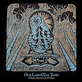 Our Lady of the Tall Trees by Cahalen Morrison