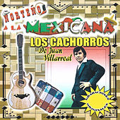 Play & Download Norteno a la Mexicana by Los Cachorros de Juan Villarreal | Napster