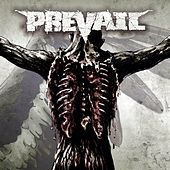 Prevail by Prevail