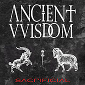 Play & Download Sacrificial by Ancient VVisdom | Napster