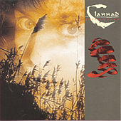 Past Present by Clannad