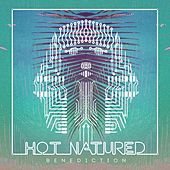Benediction (Radio Edit) by Hot Natured