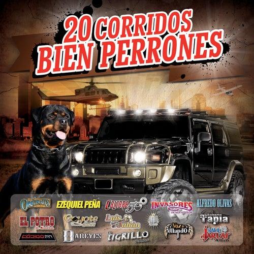 20 Corridos Bien Perrones by Various Artists