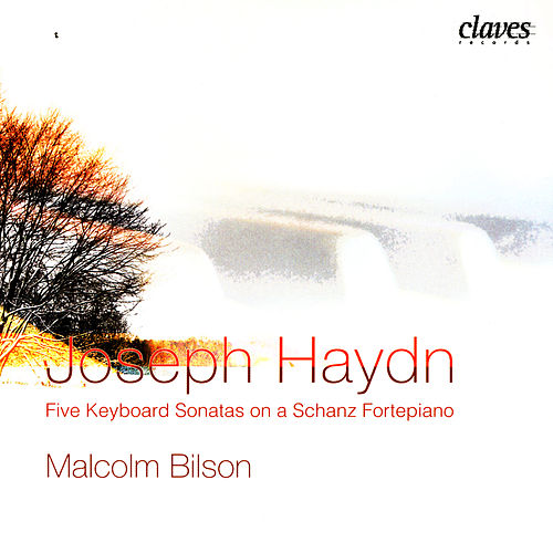 Joseph Haydn: Five Keyboard Sonatas On A Schanz Fortepiano by Franz Josef Haydn