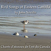 Play & Download Bird Songs of Eastern Canada by John Neville | Napster