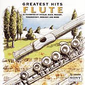Play & Download Greatest Hits - Flute by Various Artists | Napster