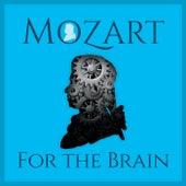 Mozart For The Brain von Various Artists