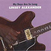 My Days Are So Long by Linsey Alexander