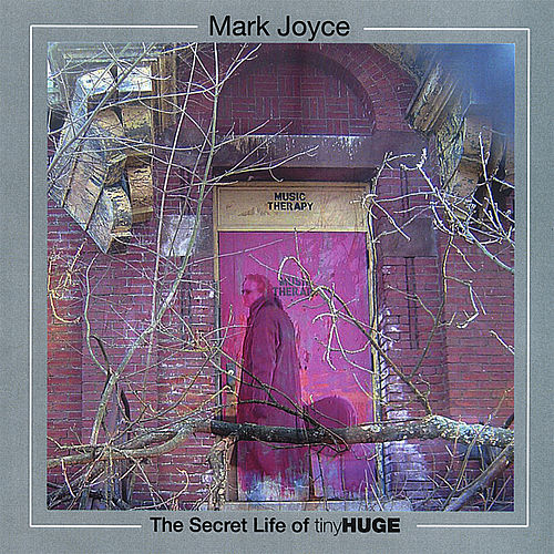 The Secret Life Of tinyHUGE by Mark Joyce