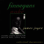 Finnegans Wake by Patrick Ball