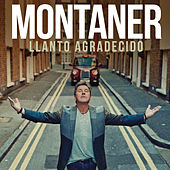 Play & Download Llanto Agradecido by Ricardo Montaner | Napster