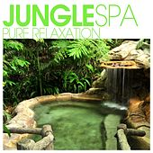 Play & Download Jungle SPA - Pure Relaxation by Various Artists | Napster