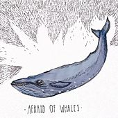 Afraid Of Whales by Issa