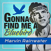 Play & Download Gonna Find Me a Bluebird by Marvin Rainwater | Napster
